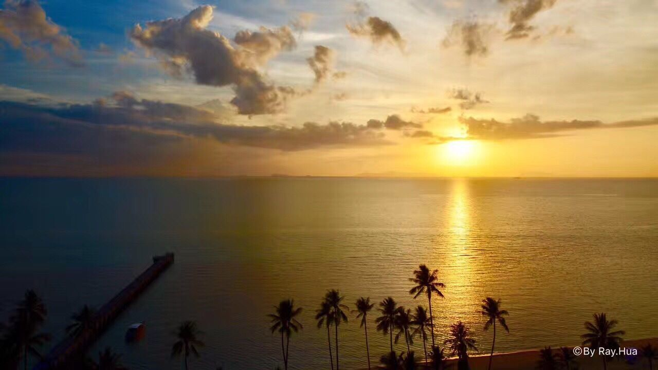 sunset, sea, water, beauty in nature, scenics, sky, reflection, sun, nature, cloud - sky, silhouette, tranquility, tranquil scene, horizon over water, palm tree, beach, outdoors, travel destinations, sunlight, tree, vacations, no people, day