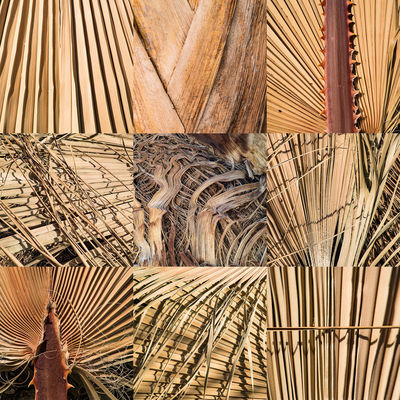 Dryness Abstract Photography Dry Leaves Abstract Brown Color Close-up Day Dry Grass Geometric Abstraction Indoors  Lines, Shapes And Curves No People