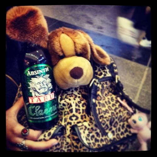 Things are getting Weird (I'm not really Drinking this, kids!). Puppy Absinth leopard pokemon mew backpack liquor cute ilovemypuppy dogsofinstagram lüneburg trainstation germany bottle picoftheday love lol omg hipster