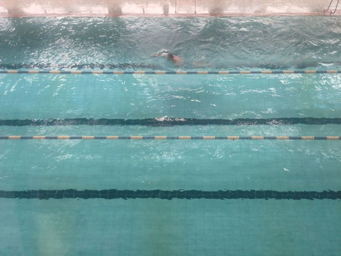 View of person swimming in swimming pool