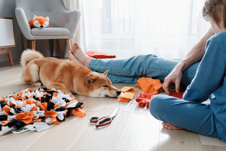 Cute preschooler boy and dad making diy snuffle mats for their pets, domestic cat and dog