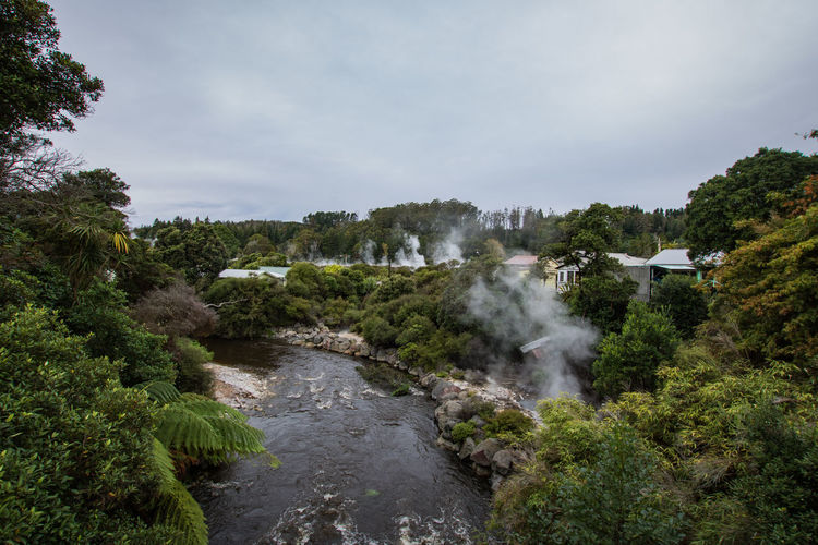 geothermal activity in new zealand Travel Beauty In Nature Cloud - Sky Day Environment Flowing Flowing Water Green Color Growth Heat - Temperature Hot Spring Land Nature New Zealand No People Non-urban Scene Outdoors Plant Power In Nature Scenics - Nature Sky Steam Tranquil Scene Tree Water The Great Outdoors - 2018 EyeEm Awards