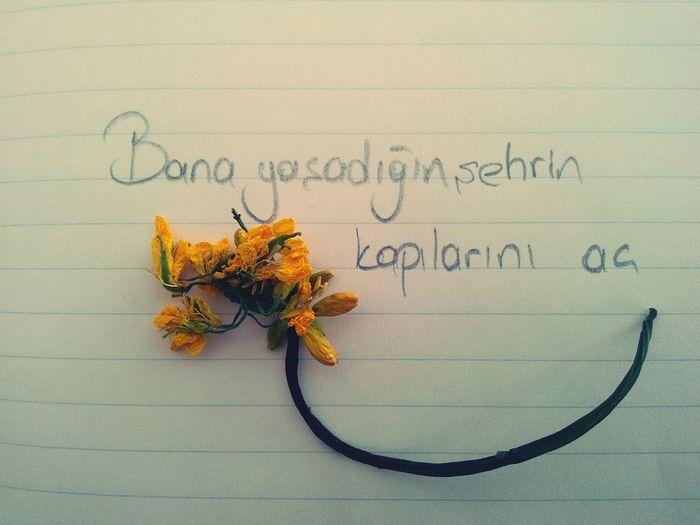 şiir Sokakta Siirsokakta Siirheryerde Siirinibiraktim #şair #şiirkokusu #şiiraşkı #poem #poetry #poet #şiirsokakta #şiir şiirkalpte şiirkalbinde Poems My Pic My Poem