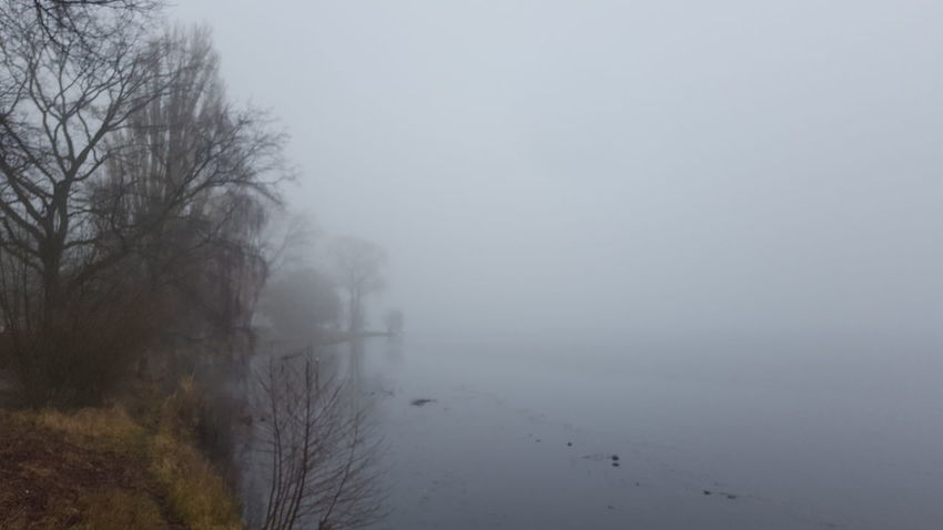 Alster Germany🇩🇪 Hamburg Hamburg City January January 2018 Winter Fog Beauty In Nature Foggy Foggy Day Germany Lake Lake View Mystical Atmosphere Nature No People Outdoors Peaceful Peaceful And Quiet Silence Of Nature Fog Tranquility Mist Tranquil Scene Scenics Water Weather Landscape Hazy  Bare Tree