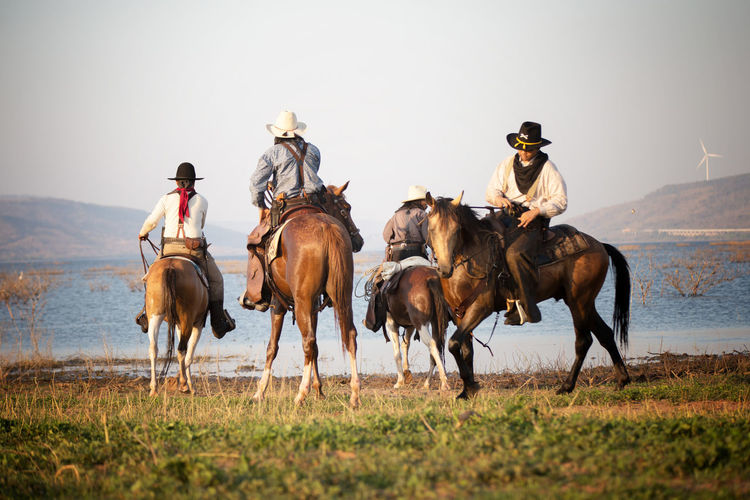 Mammal Domestic Animals Horse Group Of Animals Domestic Livestock Animal Wildlife Horseback Riding Pets Ride Riding Working Animal Vertebrate Activity Men Real People Land Grass Cowboy Outdoors Cowboy Hat Herbivorous