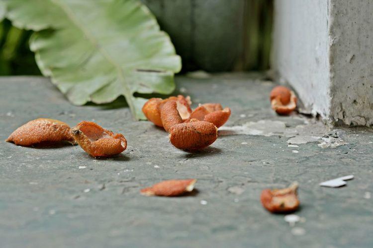Orange Peels On Floor By Leaf
