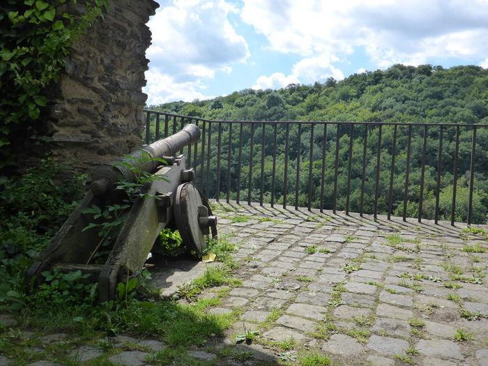 Ancient Castle Historical Building Mosel Pyrmont The Past Observer Canon Germany History Architecture Old