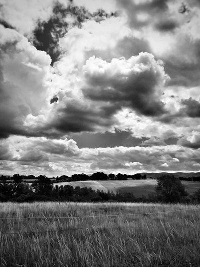 Cloud - Sky Agriculture Field Sky Nature Rural Scene Tranquil Scene Tranquility No People Beauty In Nature Landscape Scenics Grass Clouds EyeEm Tree Paysage Storm Cloud Blackandwhite Bnw Bnw_collectionEyeEm Best Shots Eye4photography  EyeEmBestPics Beauty In Nature