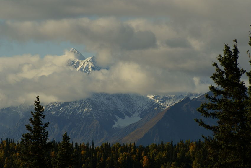 Alaska Beauty In Nature Cloud - Sky Cloudy Landscape Mountain Mountain Range Nature Outdoors Parks Hwy Remote Snowcapped Mountain Tranquil Scene Tranquility