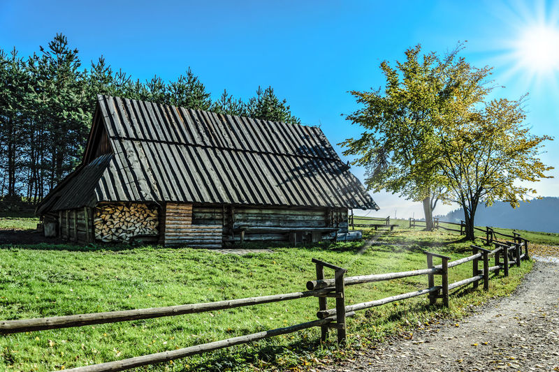 Highlander mountain hut. Old wooden hut in the mountains on a sunny day Agriculture Architecture Clear Sky Ecology Europe Farm Grass Highland Hut Landscape Mountains Nature Nature Old Pieniny Pollen Sheep Shepherds Sky Slovakia Sunlight Tree Wooden