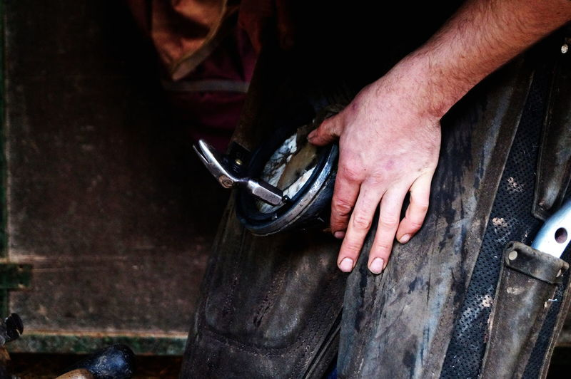 Farrier at work Blacksmith  Farrier Hands Hands On Horse Horseshoe Metal Metalwork Working Hard