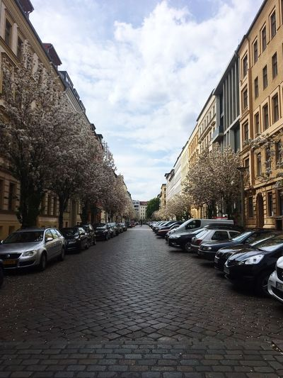 Lottumstrasse Berlin Mitte Berlin Prenzlauer Berg Streets Bluming Trees Spring Flowers Parked Cars Empty Streets Lovers or Somebody is there in the Distance Romantic Scenery Romantic View Serenity Peaceful Peace And Quiet Peaceful View Peace And Tranquility Low Angle View Low Angle Discover Berlin
