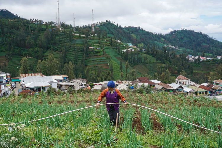 The farmer is working in his garden, Mount Bromo. Real People Plant Green Color Nature Architecture Field Day Built Structure Growth One Person Land Lifestyles Environment Landscape Beauty In Nature Rural Scene Farm Grass Building Exterior Outdoors Farmer Farmer