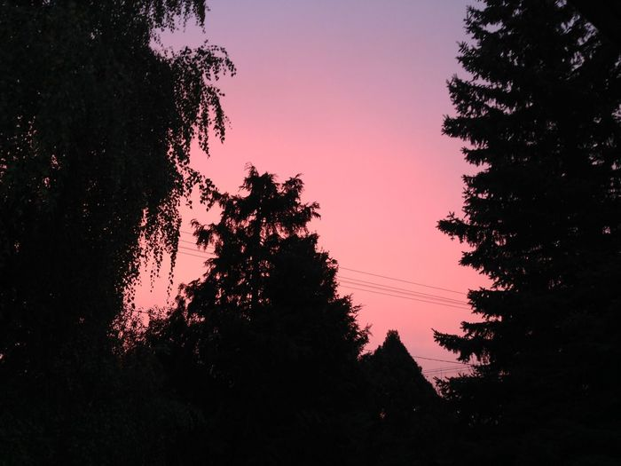 no filter needed Sunset Kenese Purplerain First Eyeem Photo