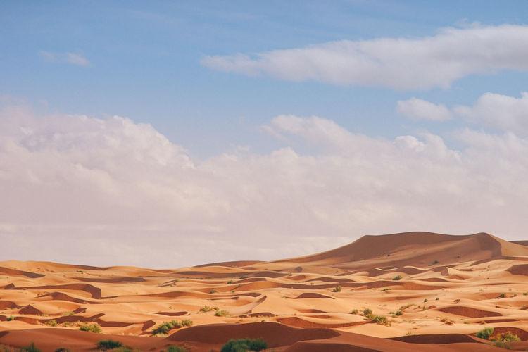 Sahara Desert, Morocco Landscape Scenics - Nature Sky Desert Land Sand Dune Environment Tranquil Scene Tranquility Sand Cloud - Sky Beauty In Nature Arid Climate Climate Non-urban Scene Nature Day No People Horizon Over Land Remote Outdoors Atmospheric Sahara Desert Morocco Summer