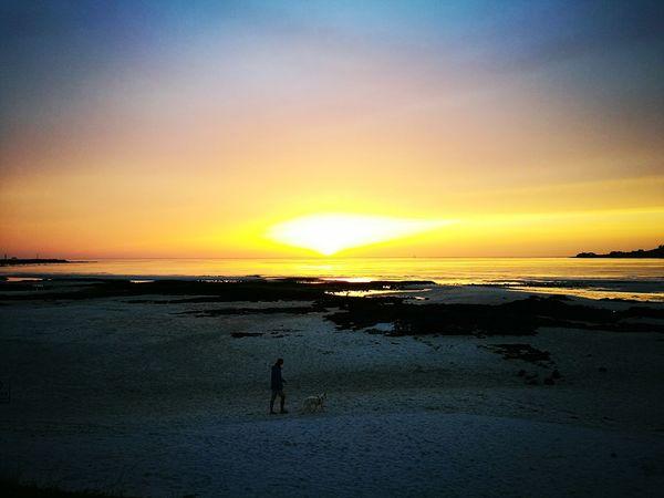 Sunset Beach Sea Nature