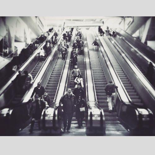 Pathstation WorldTradeCenter NYC Urban Commuters Whereyagoing