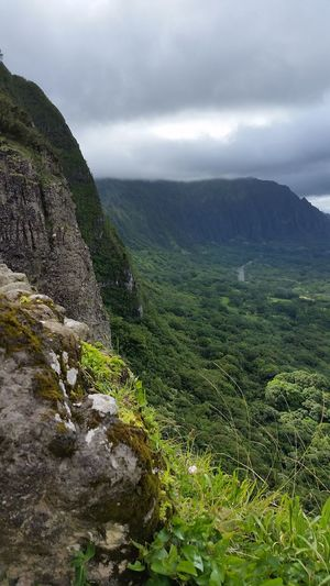 The Pali Pali Pali Hwy Pali Lookout Hawaii Hawaiishots Historic Landscape Landscape_Collection Oahu Oahu, Hawaii Nature Photography Mysterious Green Shades Of Green  Mountains Mountain Tourism Tourist Travel Traveling EyeEm Nature Lover Beauty In Nature Clouds And Sky