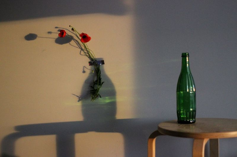 Bottle Alcohol Container Shadow Table No People Drink Indoors  Nature Still Life Beer Bottle Food And Drink Green Color Wall - Building Feature Refreshment Glass - Material Red Fragility Wine EyeEmNewHere This Is My Skin The Creative - 2018 EyeEm Awards The Still Life Photographer - 2018 EyeEm Awards
