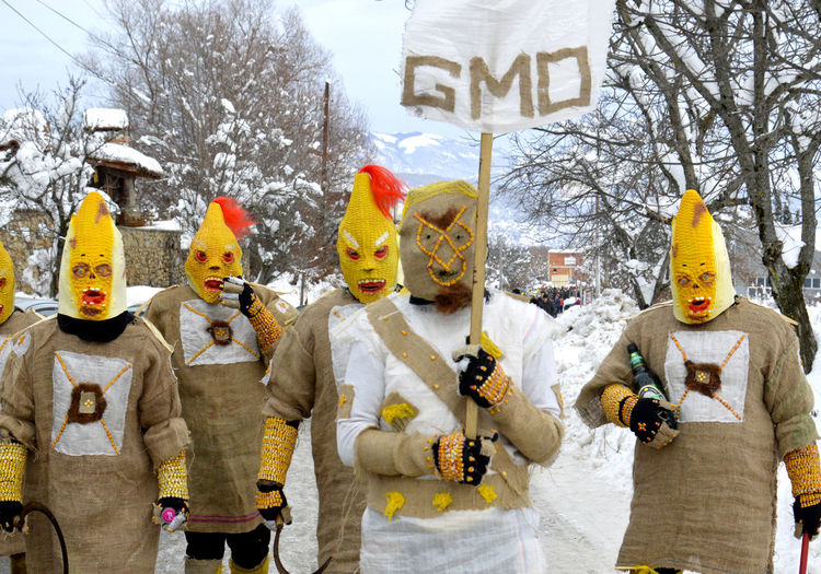 Group of people wearing costume on street during winter