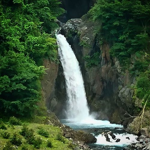Waterfall River Nature Water Outdoors Beauty In Nature Scenics Motion Forest Tree Tranquil Scene Landscape No People Travel Destinations Beauty Day Freshness Nature Japan 風景 Tree Horizon Over Water Japan Photos Sky