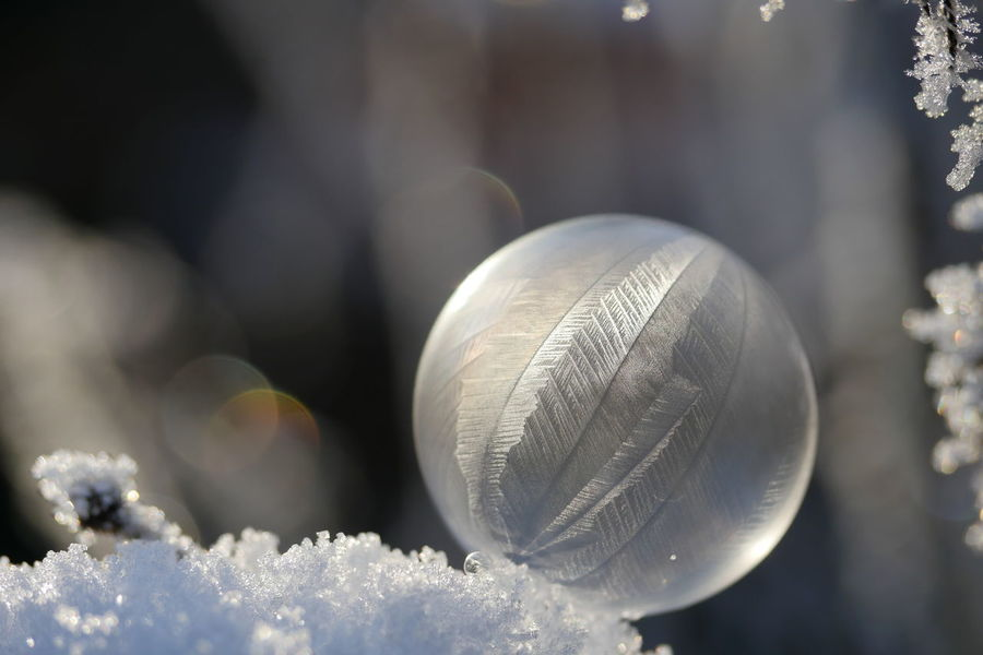 Frozen soap bubble Bokeh Bubbles Cold Temperature Fragility Frozen Macro Outdoors Pattern Patterns In Nature Reflection Snow Soap Bubbles Winter Magic Moments Close-up From My Point Of View Sphere Close Up Frozen Bubbles No People Frost Crystals Ice Crystals Ladyphotographerofthemonth Maximum Closeness