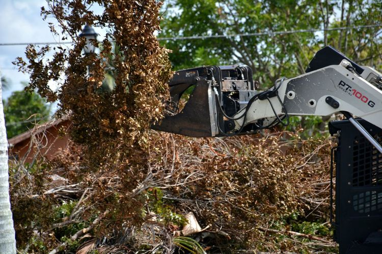 Cleaning up after Hurricane Irma Outdoors Heavy Equipment Business Finance And Industry Aftermath Damages Hurricane Irma 2017 Clean Up Hurricane Relief Storm Debris Storm Damage Hurricane Damage Hurricane Season  Debris Downed Trees Roadside Downed Tree