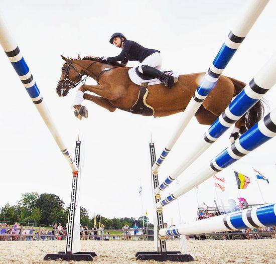 ✈EyeEm Best Shots Horse Power Eyem Masterclass Equestrian Life Flying High Showjumping Eyemphotography
