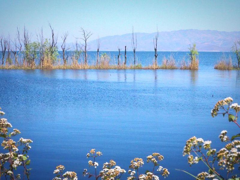 Erhai Lake Erhai Lake,Dali Beauty In Nature Lake Blue Lake Scenics Clear Sky Tranquil Scene Outdoors Dalí Dali Yunnan Yunnan Yunnan ,China Blue Color Blue Lagoon No People Nature Landscape China Photos China Beauty
