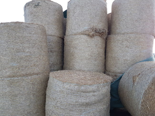 Hay Hay Bale Haystack Straw Straw Bales Agriculture Agricultural Field Agricultural Machinery Agricultural Land Agriculture Photography Farm Farmland Bale  Rolled Up Cultivated Land Harvesting Plantation