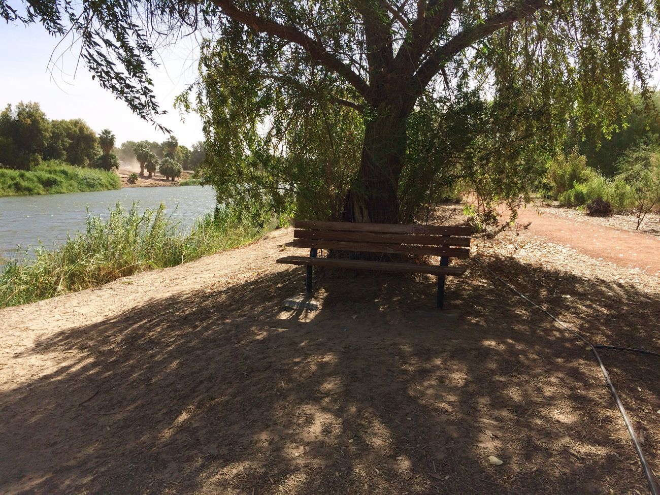 Much appreciated bench on nature trail next to the Colorado River, at West Wetlands Park in Yuma, AZ.✨ West Wetlands, Yuma, AZ Me Alone IPhone Photography Riverside Photography Tree Plant Shadow Nature Water Sunlight Tranquility Beauty In Nature Outdoors Sky Land Scenics - Nature Sand