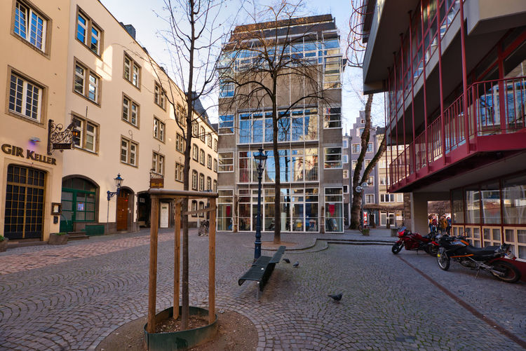 Cologne, GERMANY - February 15, 2019: Many unidentified individuals enjoy the warm sundown in the historic old town Architecture Built Structure Building Exterior City Building Street Bare Tree Incidental People Day Residential District Transportation City Life Nature Mode Of Transportation Outdoors Modern Tree Footpath Unrecognizable Person Apartment