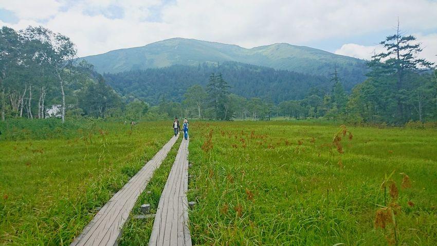 尾瀬8/13 尾瀬 山 至仏山 尾瀬ヶ原 ハイキング 風景 Landscape Hiking Mountain Green
