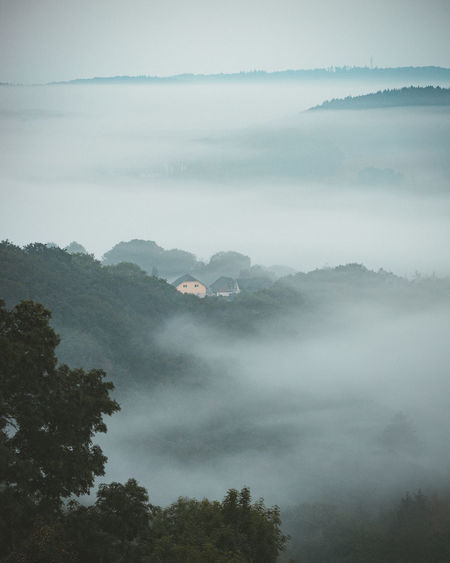 Scenic view of foggy morning
