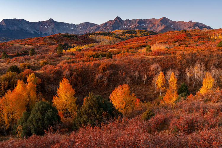 Scenic view of mountain during autumn
