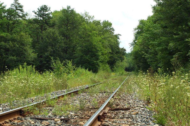 Railroad Track Belchertown, Massachusetts