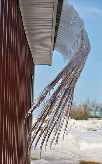 Icicles Barn Canonphotography Cold Day Dripping Ice Icicles Outdoors Roof Sky Snow Winter