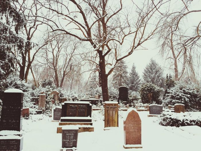 Snow in the Cemetery Winter White By CanvasPop
