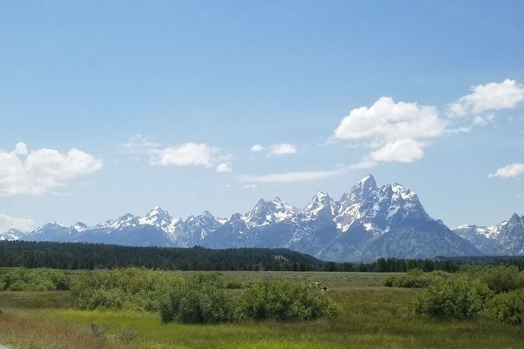 Grand Tetons, Wyoming USA The Great Outdoors - 2018 EyeEm Awards Mountain Range Grand Tetons National Park Sky, Mountains Mountain Agriculture Rural Scene Sky Landscape Mountain Range Cloud - Sky Snowcapped Mountain Summer Road Tripping The Still Life Photographer - 2018 EyeEm Awards The Traveler - 2018 EyeEm Awards The Great Outdoors - 2018 EyeEm Awards
