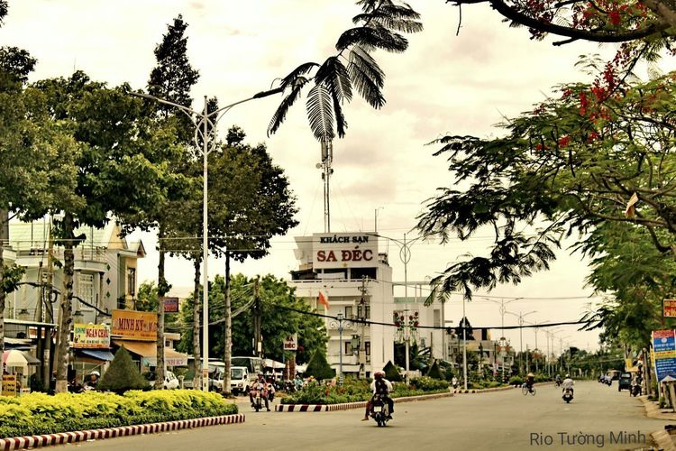 Sa Đéc - L'amant SaDec Vietnam L'amant Tree Cycling City Bicycle City Life People Outdoors