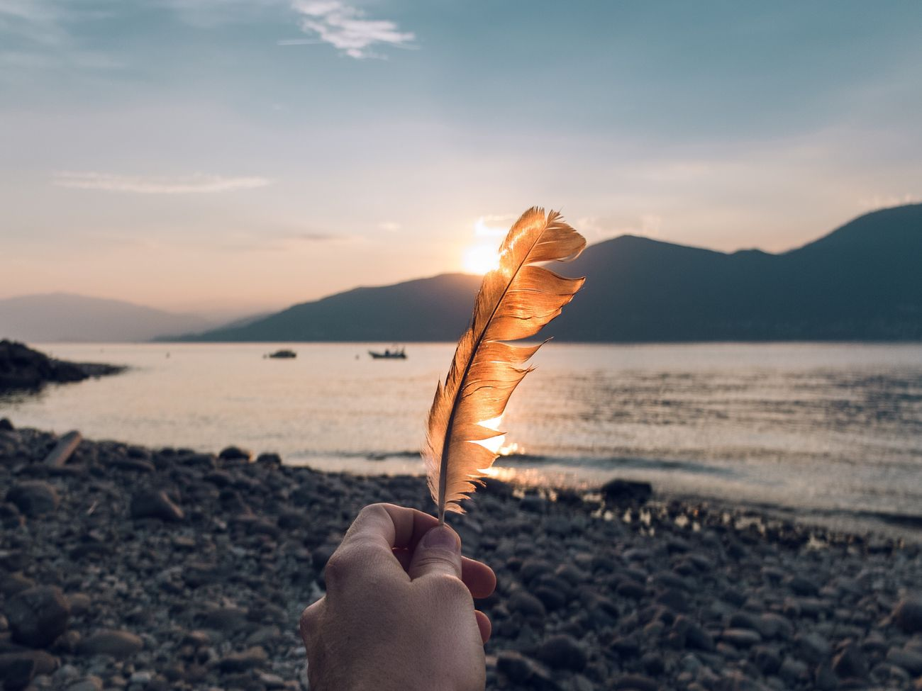 Close-up of person holding feather on beach