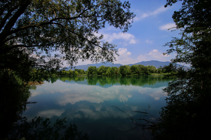 No People Landscape Tranquil Scene Torbiere Water Paesaggio Torbieredelsebino Clouds And Sky Landscape_photography Green Nature Acqua Verde Landcsape Montagne Mountain Reflection Beauty In Nature Riflessosullacqua Reflection In The Water Tree Cloud - Sky