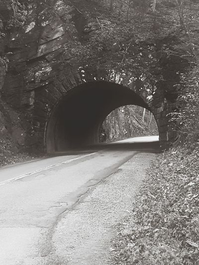 Road No People Day Tree Nature Outdoors Sky Nature Natural Arch Tunnel Cades Cove Smoky Mountains North Carolina Tennessee Travel Destinations Geology Physical Geography ScenicsbBlack & White