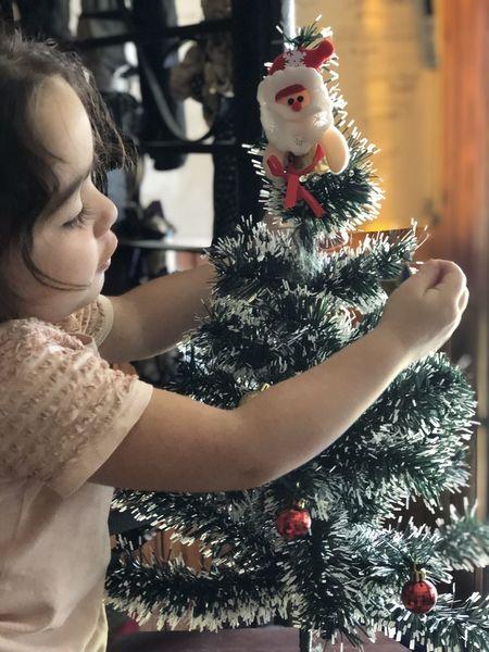 Esperando la navidad Celebration Christmas christmas tree Holiday Christmas Decoration Tree Real People