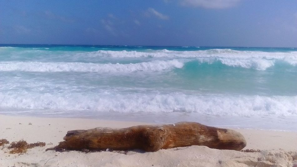 TakeoverContrast No Effects No Filter Ocean View Beach Photography Tree Trunk on the Sand El Mirador Beach Cancun Mexico The Great Outdoors - 2017 EyeEm Awards