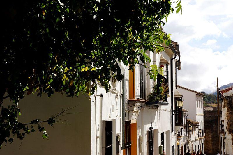SPAIN Ronda Small Village White Andalucía