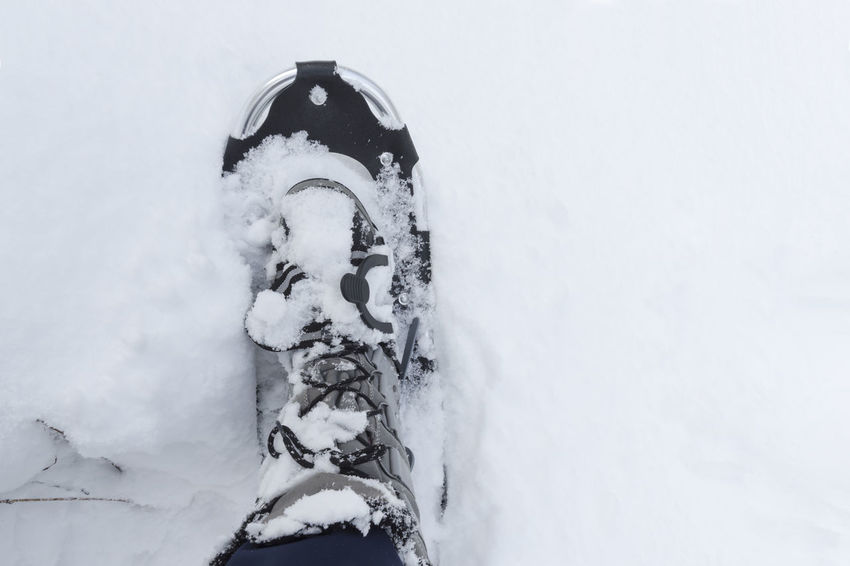 Snowshoe dip into deep snow Copy Space Hiking Nature Sauerland Winter Winter Shoes Winter Sport Action Active Deep Snow Depth Of Snow Detail Fixing Going Outdoors Ski Trousers Snow Snow Covered Snowshoes Spare Time Sport Tourism Trecking Walking Warm Clothes