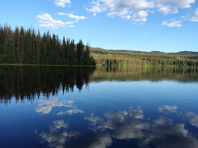 Reflection Reflection_collection Reflections Reflections In The Water Lake Sky And Clouds Water Reflections Water_collection Water Sky_collection Treescollection Trees Forest