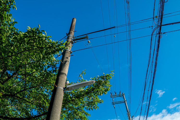 EyeEm Nature Lover EyeEmNewHere Blue Cable Connection Day Electricity  Electricity Pylon Fuel And Power Generation Green Color Growth Low Angle View Nature No People Outdoors Plant Pole Power Line  Power Supply Sky Street Streetphotography Sunlight Technology Telephone Line Tree