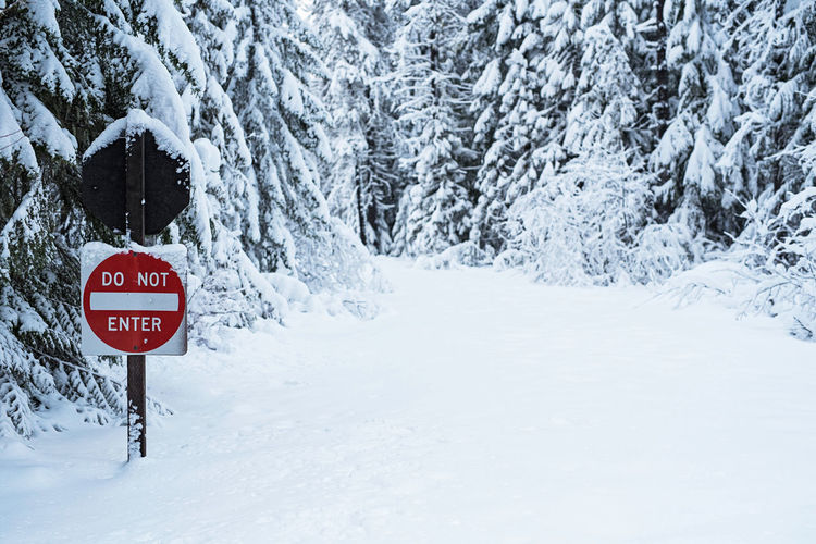 Road sign against frozen trees on snow covered field